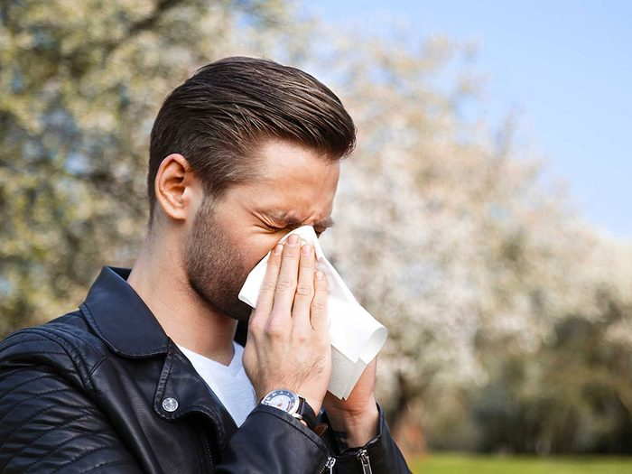 Vous commencez le traitement contre les allergies trop tard.
