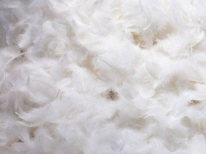 Le matériau de vos oreillers compte si vous souffrez d'allergies.