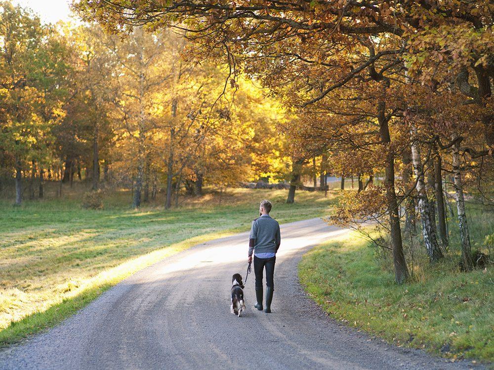 Sortez promener Fido pour marcher un peu.