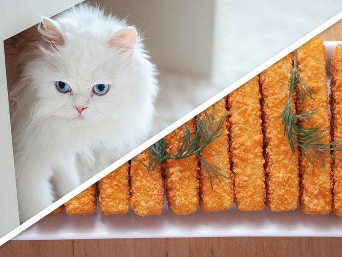 Les friandises rapides aux bâtonnets de poisson pour chat font partie des produits pour animaux que vous pouvez faire à la maison.