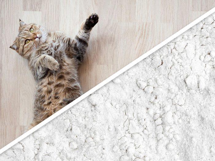 La litière fraîche pour chatons est l'un des produits pour animaux que vous pouvez faire à la maison.