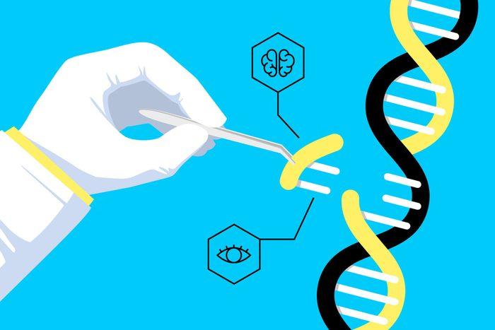 Traits de caractères et génétique