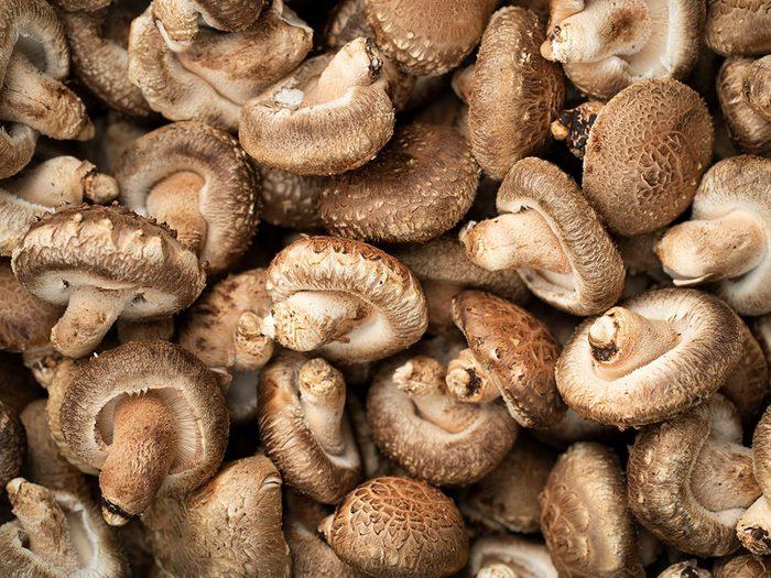Le champignon est l'un des aliments pour s'hydrater.