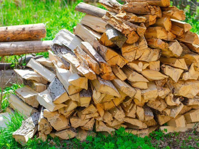 Ne pas laisser traîner de bois de chauffage dans son arrière-cour.