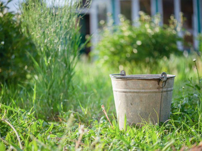 Ne pas laisser traîner tout ce qui peut contenir de l'eau stagnante dans son arrière-cour.