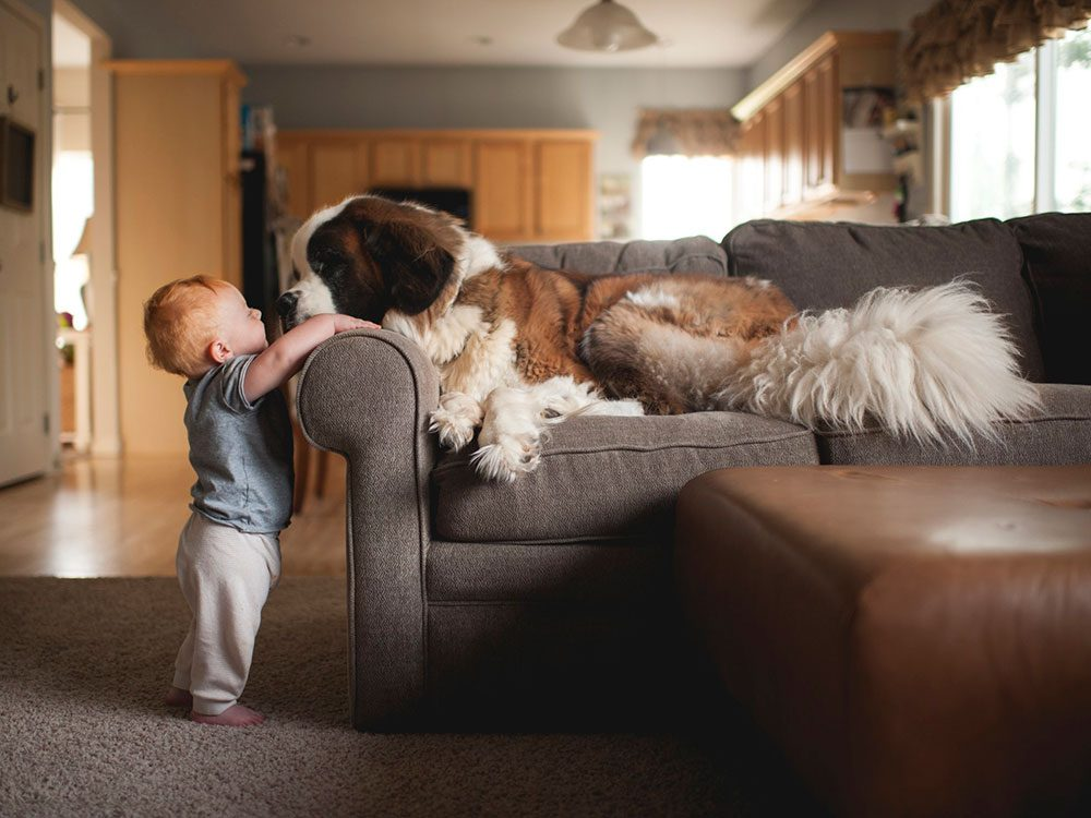Ce bébé veut embrasser son chien!