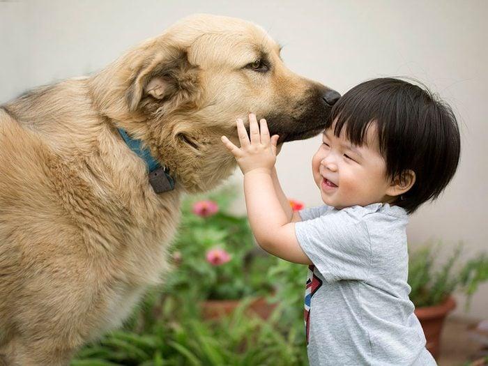Un grand chien bienveillant envers ce bébé.