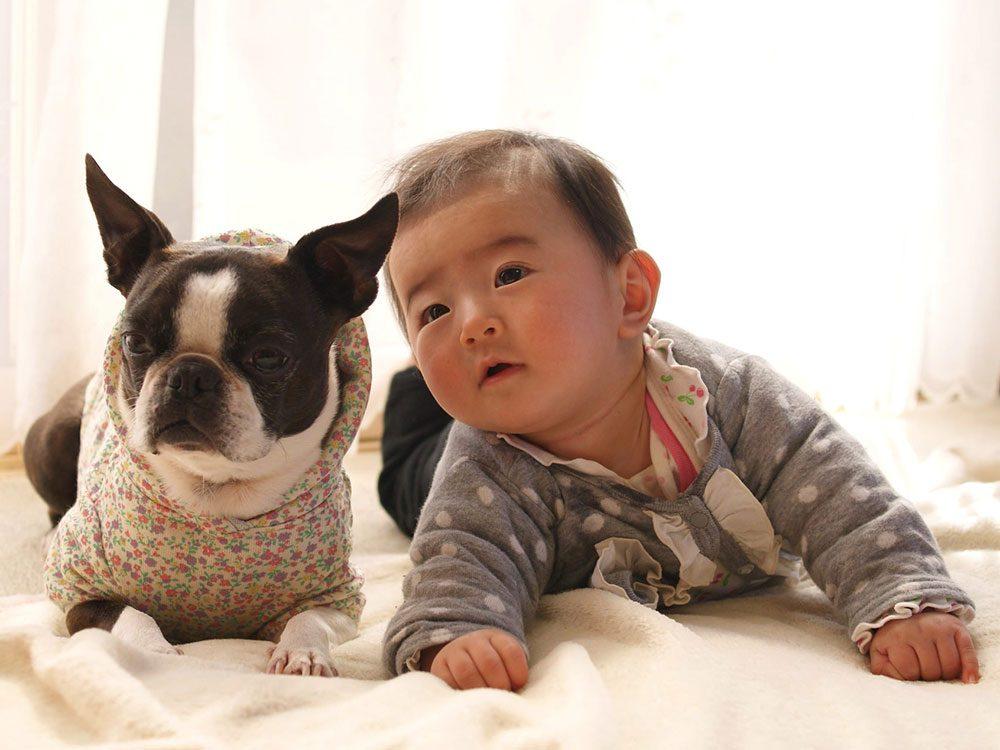 Chien et bébé sont bien habillés.
