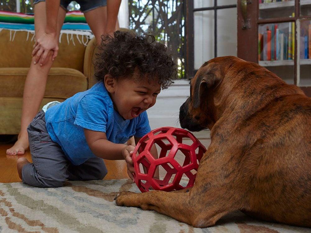 Ce bébé est ravi de jouer au ballon avec son chien.