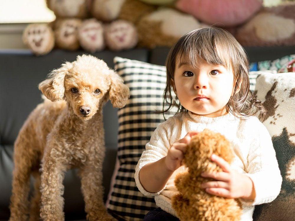 Ce bébé aime vraiment les chiens.