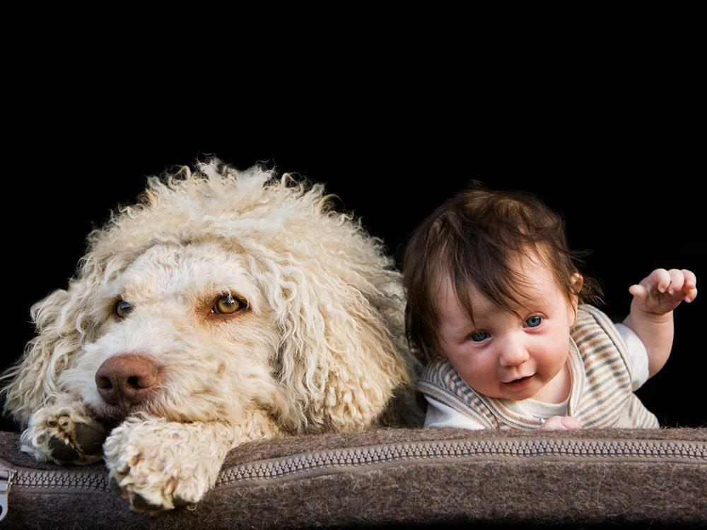 Ce chien et ce bébé ne sont jamais l'un sans l'autre.