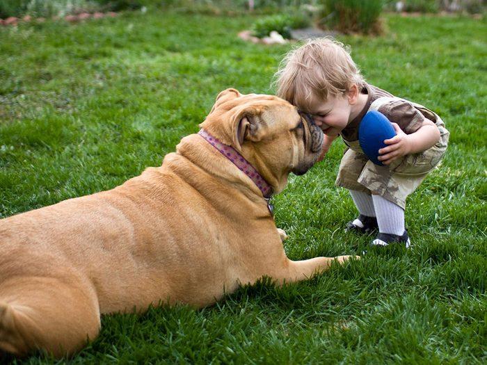 Complicité entre un bébé et son chien.