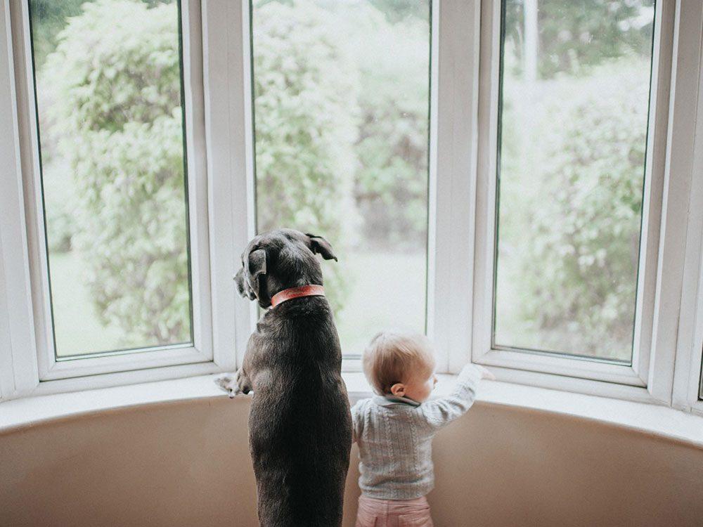 Chien et bébé à la fenêtre.