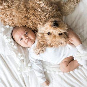 Le câlin le plus mignon ente un chien et un bébé.