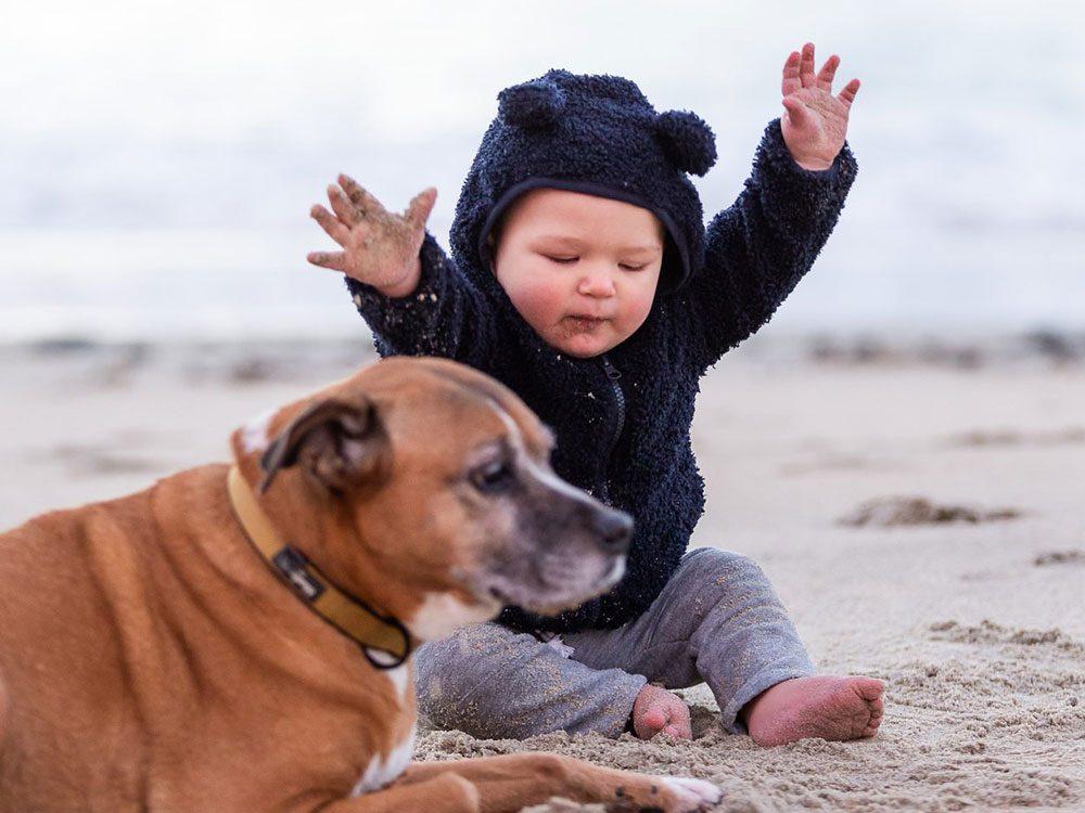 Un bébé et son chien à la plage.
