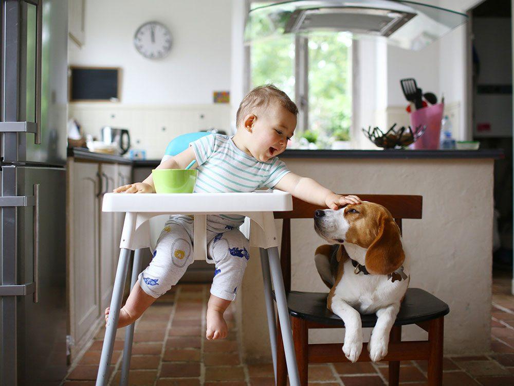 Ce bébé aime les petites intentions envers son chien.