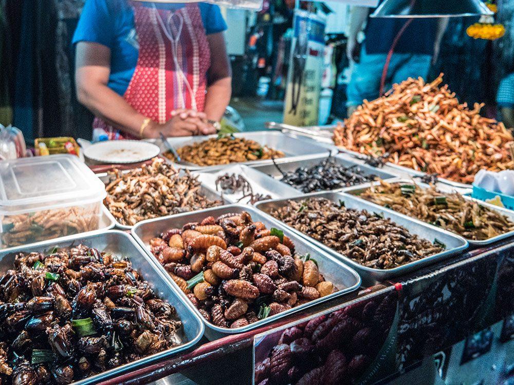 Insectes comestibles: apport nutritif et valeurs énergétiques.