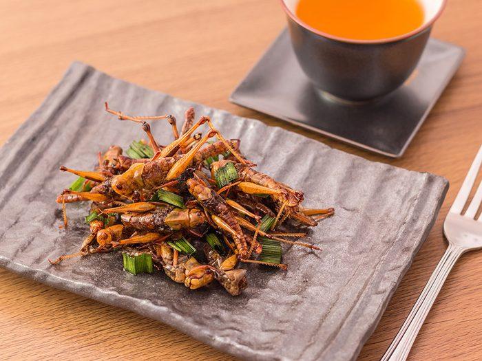 Combattre les aprioris contre les insectes comestibles.