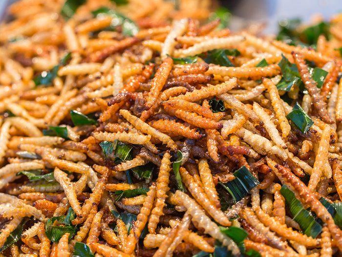 Allez-y progressivement pour consommer des insectes comestibles.