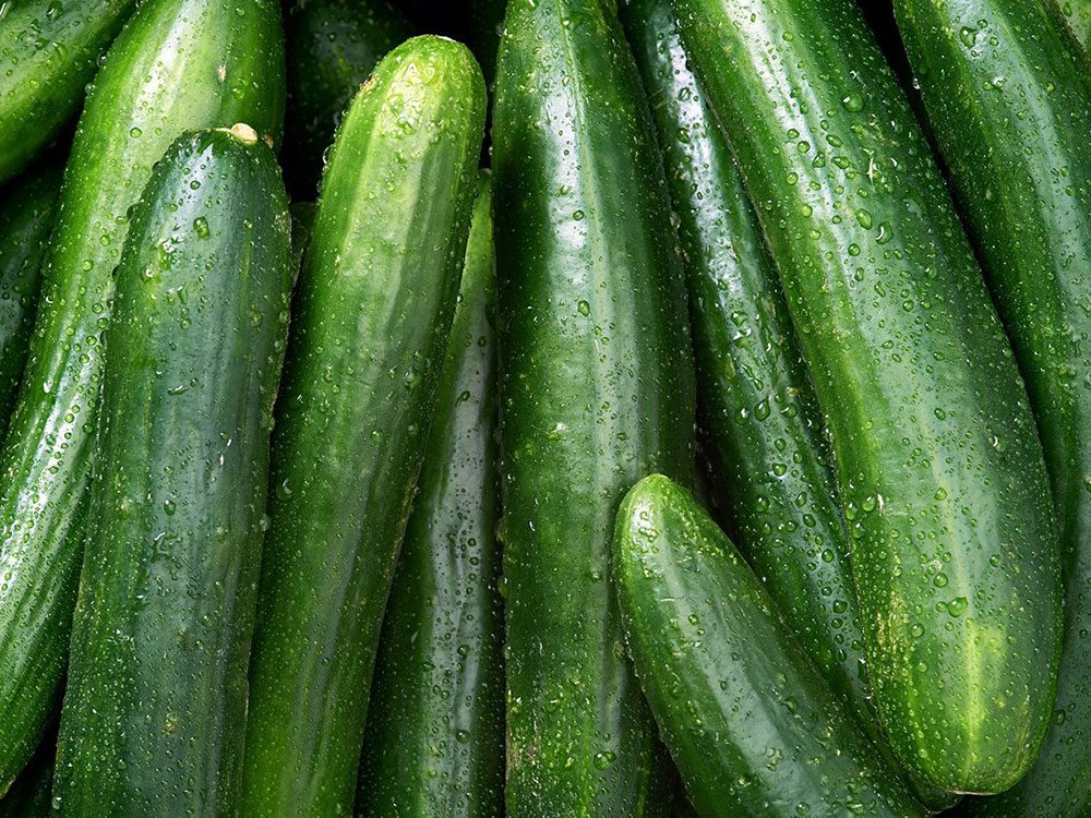 Les concombres font partie des légumes qui poussent en un temps record dans le potager!