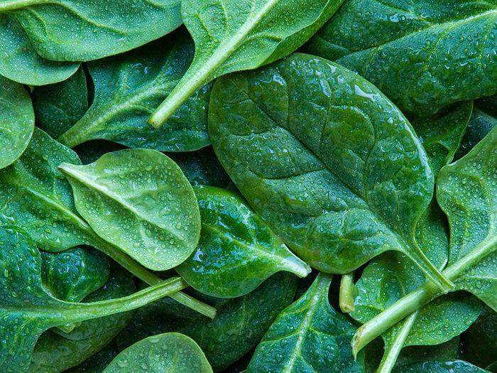 Les épinards font partie des légumes qui poussent en un temps record dans le potager!
