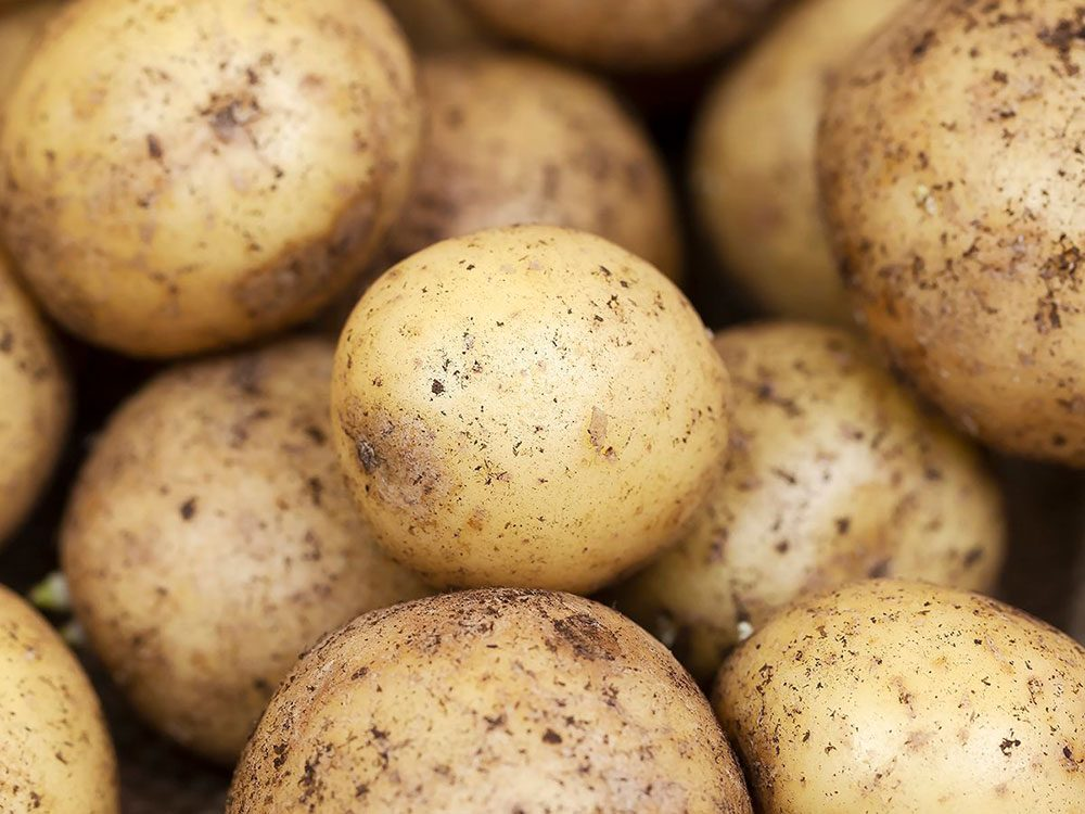 Les pommes de terre font partie des légumes qui poussent en un temps record dans le potager!