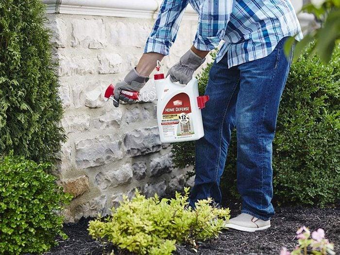 Vaporiser une barrière pyréthrine pour se débarrasser des fourmis.