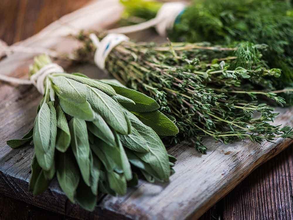 Comment conserver des aliments périssables tels que les herbes fraîches?