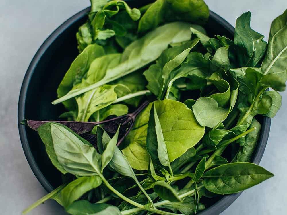 Comment conserver des aliments périssables tels que les légumes verts feuillus?