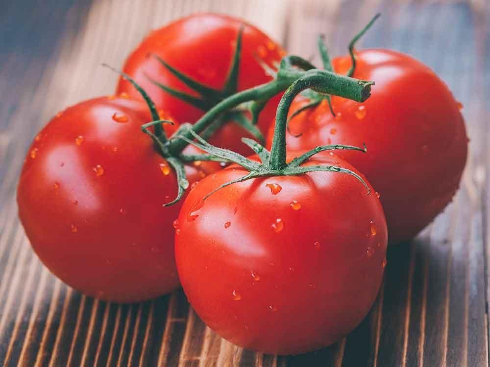 Comment conserver des aliments périssables tels que les tomates?