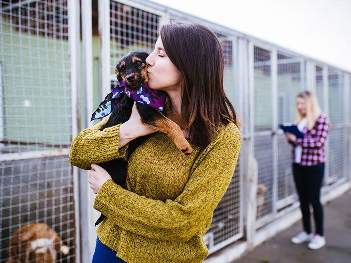 Adoptez votre animal de compagnie dans un refuge.
