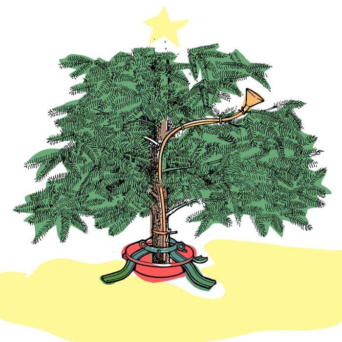 Astuces de bricolage: arroser un arbre de Noël.