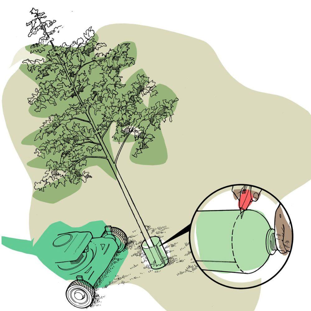 Astuces de bricolage: protéger ses arbres de la tondeuse.