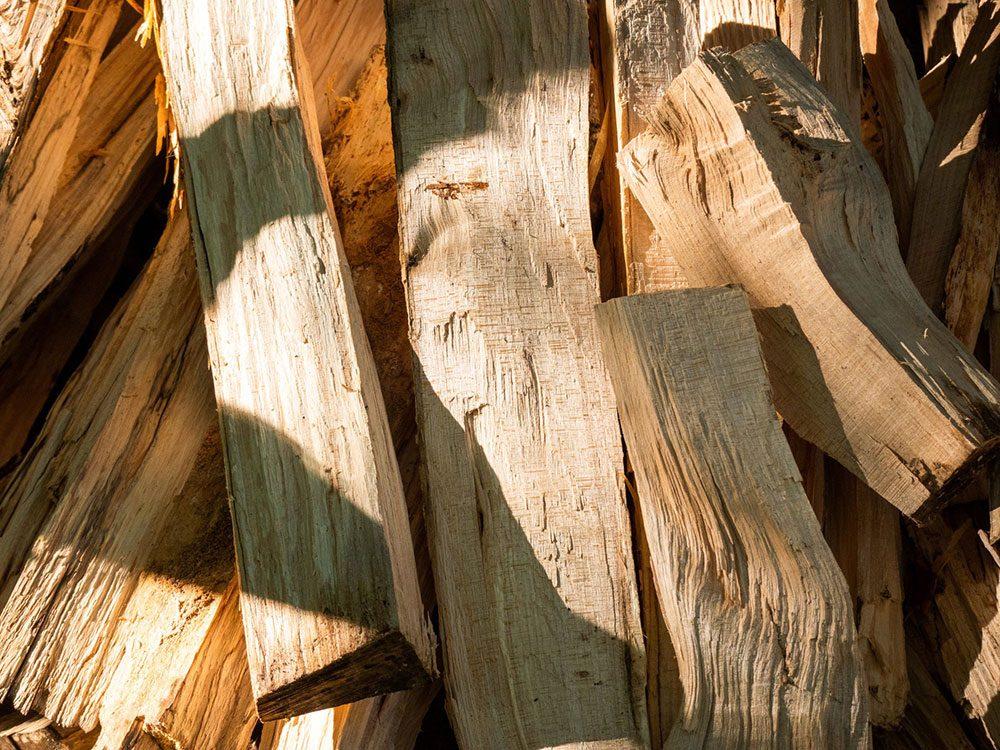 Évitez d'apporter du bois de chauffage de la maison en camping.