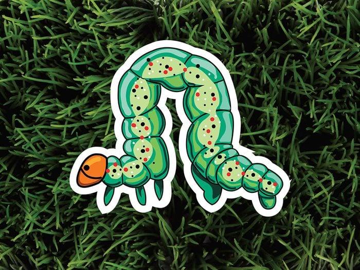 Les chenilles font partie des parasites de jardin.