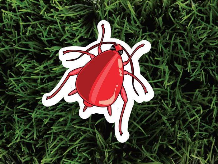 Les pucerons font partie des parasites de jardin.