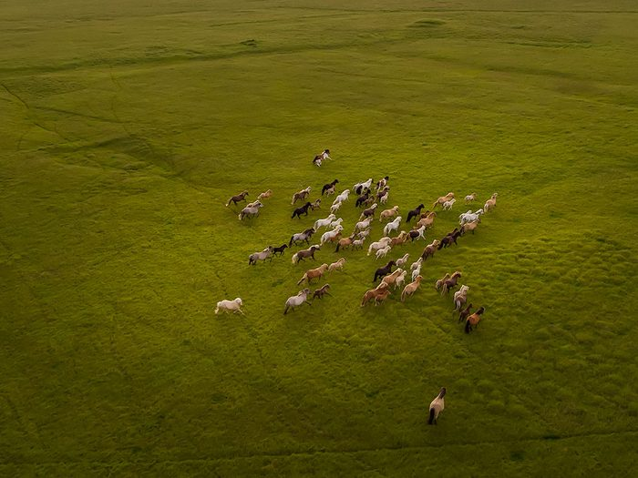Des photos aériennes de drone à couper le souffle!