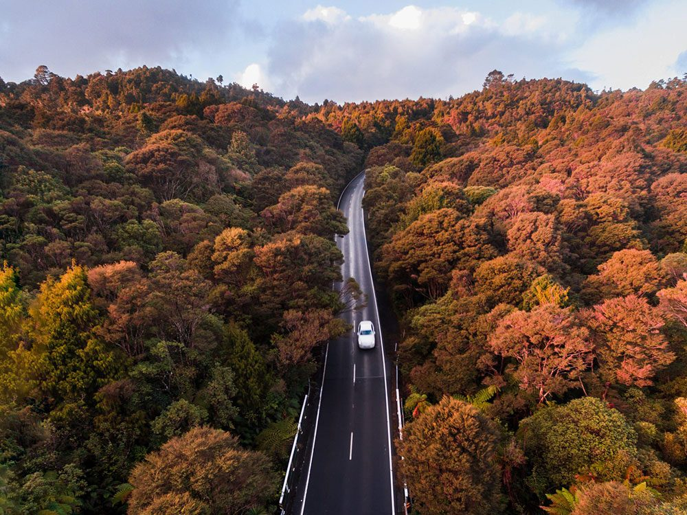 Photo aérienne de drone de Waitakere Ranges.