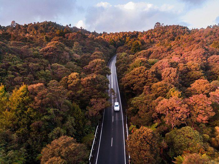 Photo aérienne de drone de Waitakere Ranges.