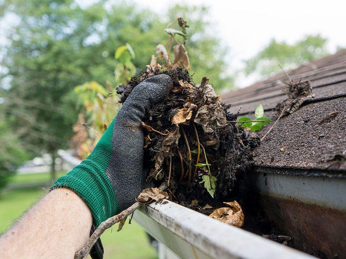 Nettoyer les gouttières et s'assurer qu'elles ne soient pas obstruées pour éviter la pollution intérieure.