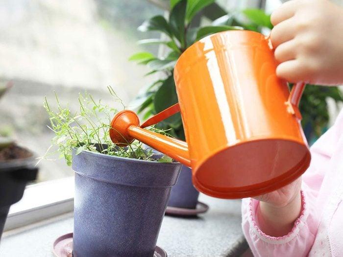 Arroser ses plantes quand on s'ennuie.