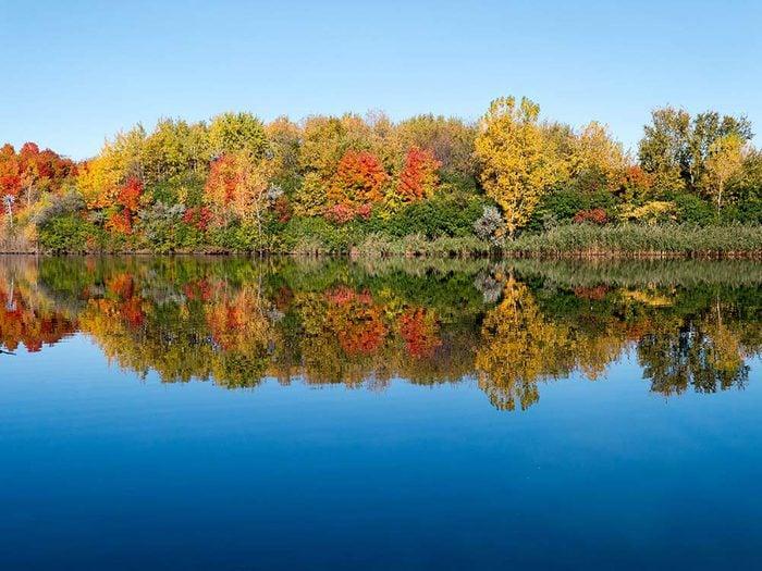 L'automne au Québec et au Canada dans le parc du Centenaire.