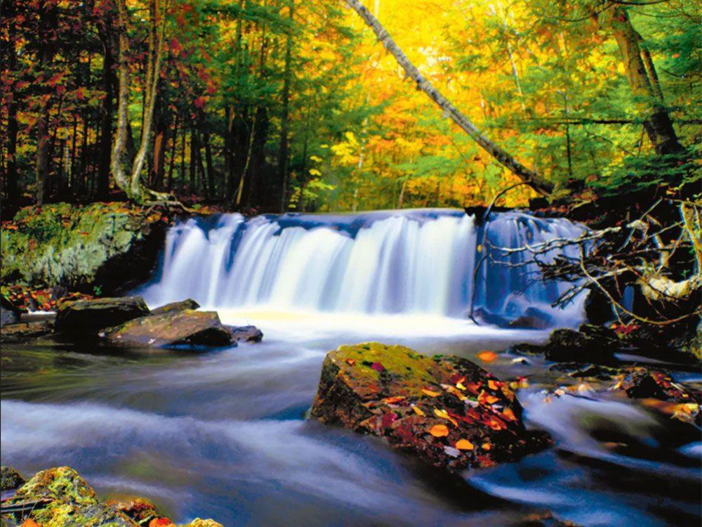 L'automne au Québec et au Canada.