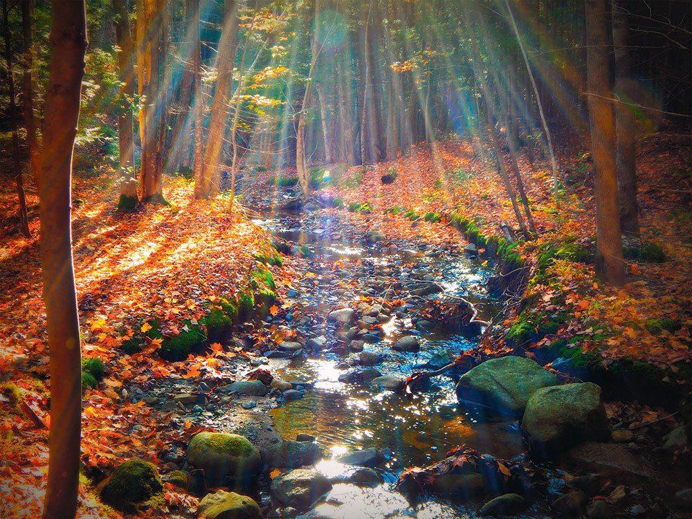 L'automne au Québec et au Canada en Nouvelle-Écosse.