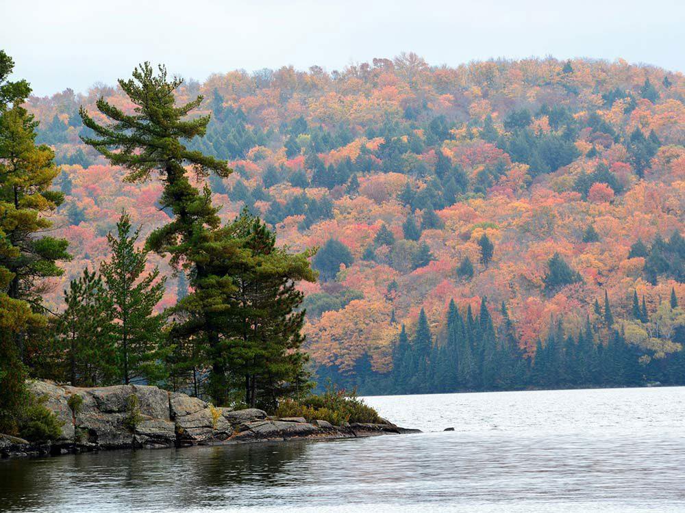 Ce cliché est très représentatif de l'automne au Québec et au Canada.