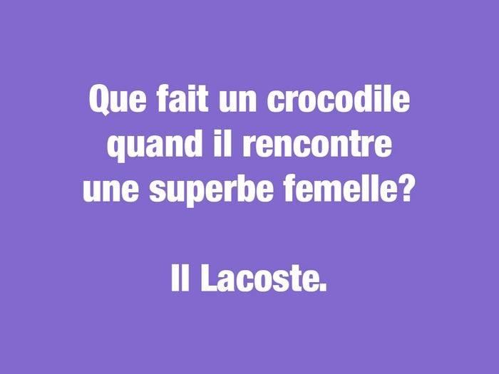 Blagues courtes: le crocodile charmeur.