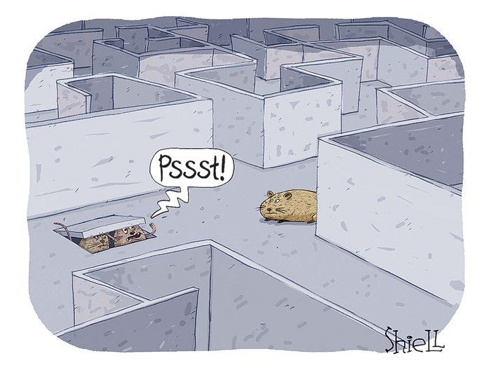 Caricature drôle sur les animaux.
