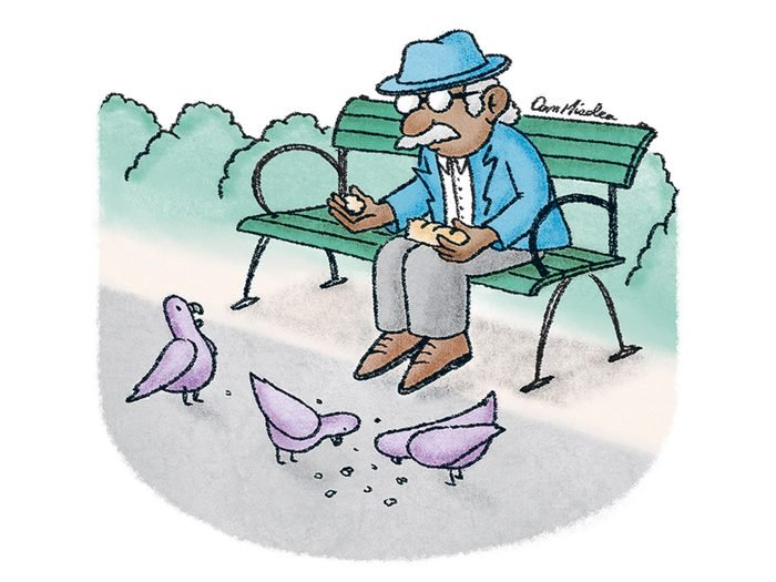 Caricature drôle sur les pigeons.