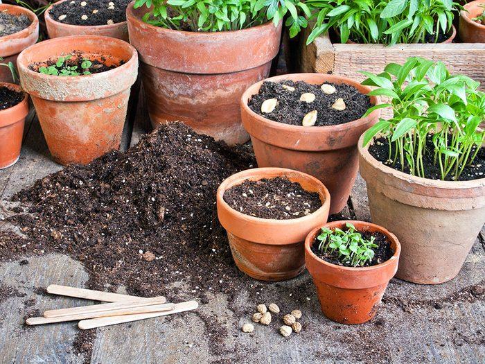 Vous pouvez utiliser l'eau de Javel pour nettoyer les pots de fleurs et de plantes.