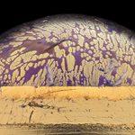 21 images prises au microscope d'objets du quotidien